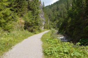 Krásna cestička okolo potoka z Oblazov na Hút