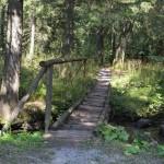 Mostíky - pozor často sa tam šmýka